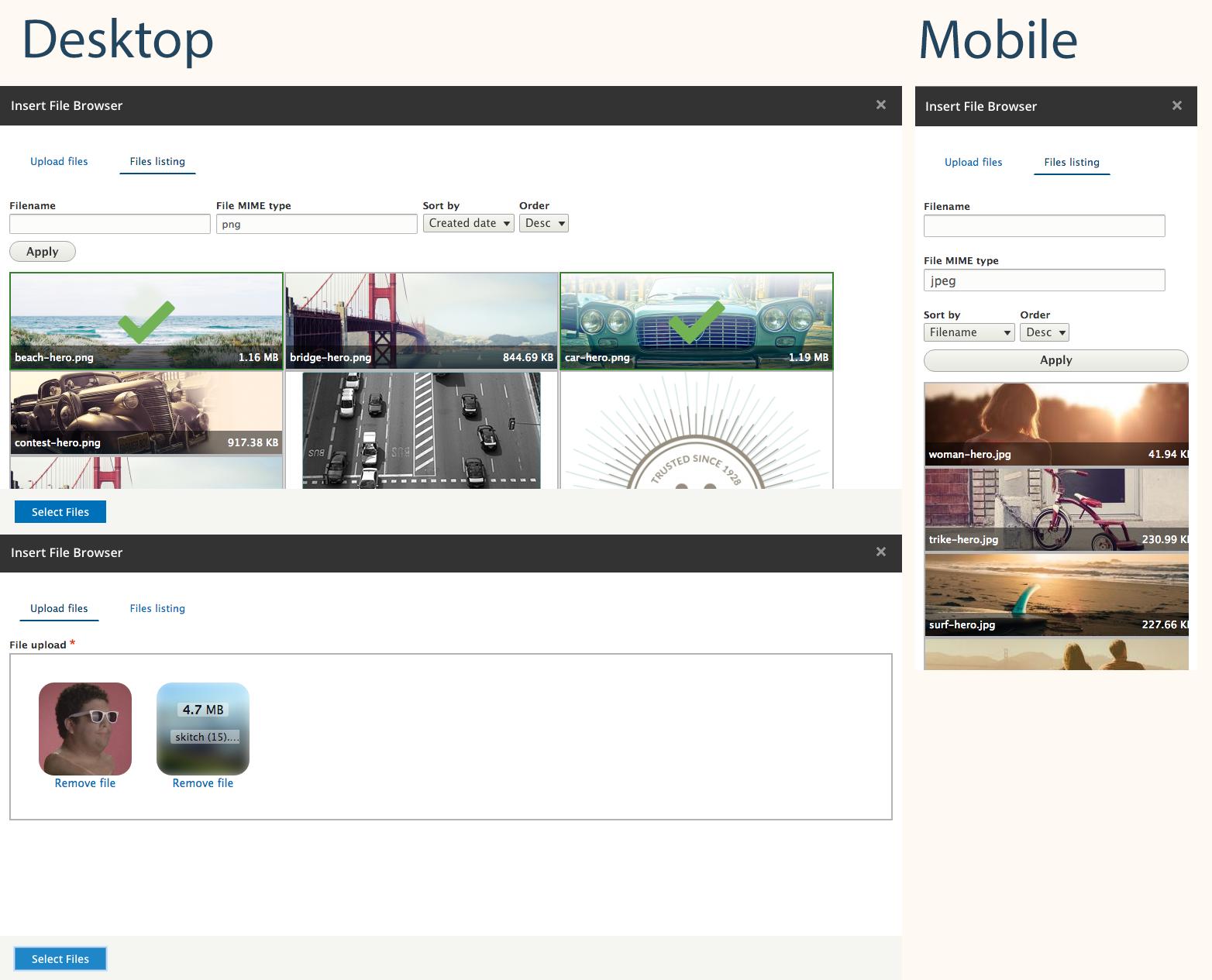 Presentations about various Drupal 8 media modules | Janez Urevc